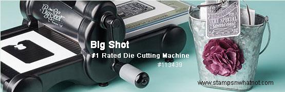 Big Shot 113439