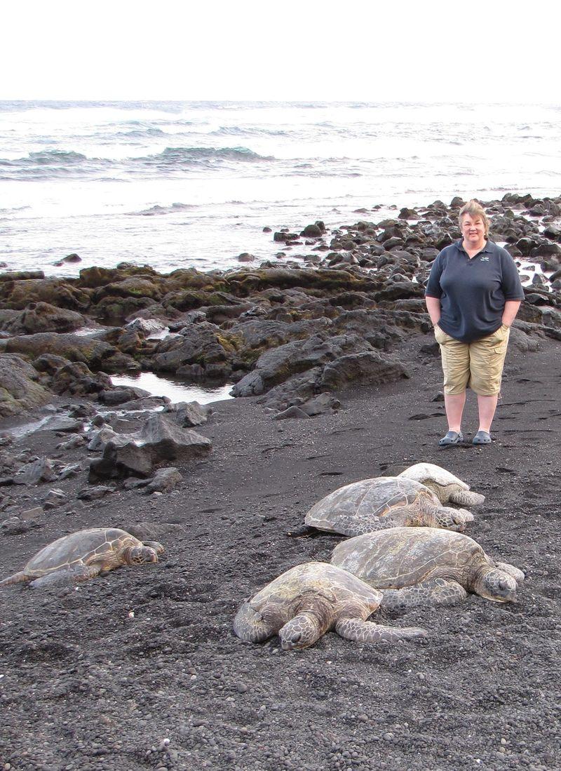 Jeannette w. the Sea Turtles